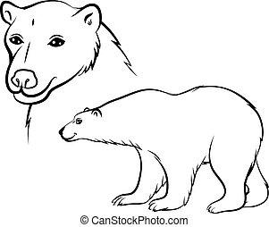 Cartoon polar bear contour