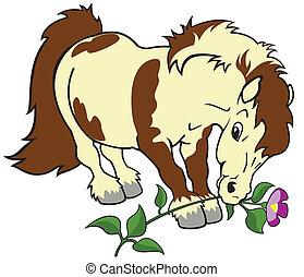 cartoon pony with flower - horse, shetland pony with flower...