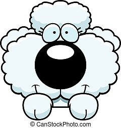 Cartoon Poodle Peeking - A cartoon illustration of a poodle...