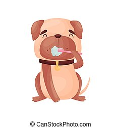 Cartoon pug cleans teeth. Vector illustration on white background.