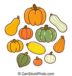 Cartoon pumpkin and squash