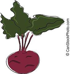 Cartoon purple beetroot vector illustration on white backgorund