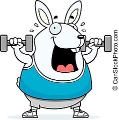 Cartoon Rabbit Dumbbells