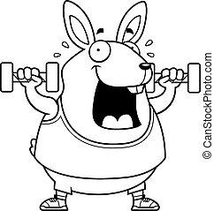 Cartoon Rabbit Dumbbells