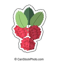 cartoon raspberry natural diet icon