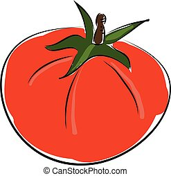 Cartoon red tomato vector illustration on white backgorund