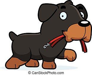 Cartoon Rottweiler Leash - A cartoon illustration of a ...