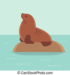 Cartoon sea lion drawing - South American (Patagonian) sea...