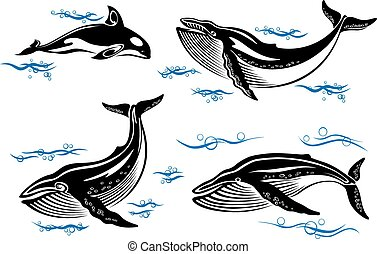 Cartoon vector sea whales with swimming baleen whales and an orca with small ocean waves