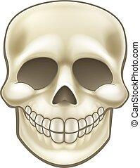 Cartoon Skull - A kids cartoon skull Halloween illustration