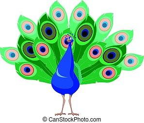 Cartoon smiling Peacock