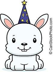 Cartoon Smiling Wizard Bunny