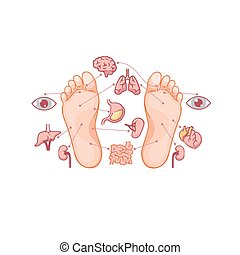 Cartoon soles of feet with marked by reflexology zones for ...