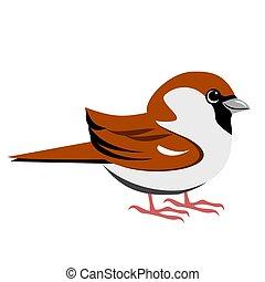 Cute bird cartoon of a house sparrow in flat color