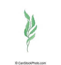 Cartoon tree branch on white background. Flora concept.