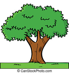 Cartoon tree - Cartoon illustration of a tree in summer