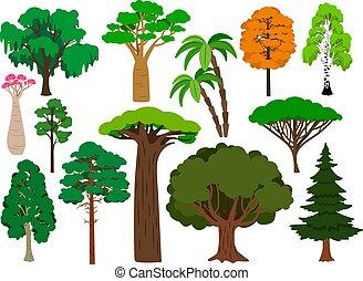 Cartoon trees. Vector green tree set, brachychiton and rowan, palm and willow, maple and poplar