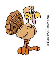 Cartoon Turkey Bird