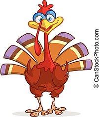 Cartoon turkey character. Thanksgiving clipart