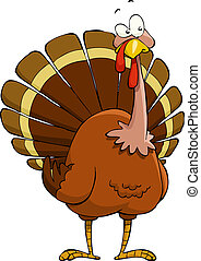 Cartoon turkey - Turkey on a white background, vector...