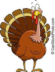 Cartoon turkey - Turkey on a white background, vector ...