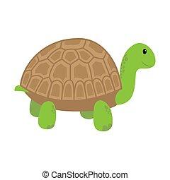 Cartoon turtle. Illustration isolated on white background.