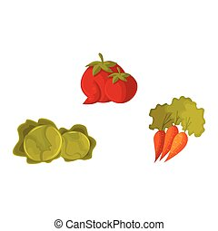 Cartoon vegetable set - tomato, carrot and cabbage