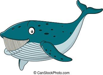 Cartoon whale shark isolated on whi - Vector illustration of...