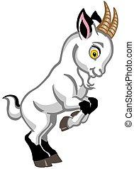 cartoon white baby goat