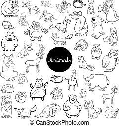 cartoon wild animal characters set color book