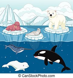 Cartoon wild arctic animal on north pole - Vector...