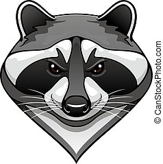 Cartoon wild raccoon animal mascot for sport team or...