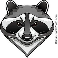 Cartoon wild raccoon animal mascot for sport team or...