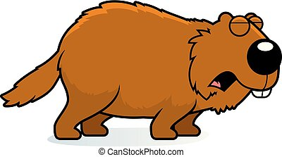 woodchuck stock illustrations 556 woodchuck clip art images and rh canstockphoto com