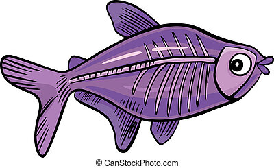 cartoon x-ray fish - cartoon illustration of x-ray fish