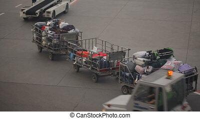 Carts with baggage at airport