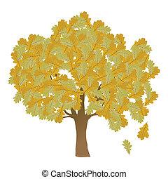 carvalho sai, árvore, outono, vetorial, fundo