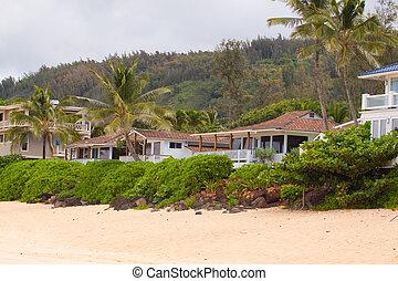 casa, alquileres, hawaiano