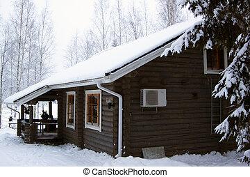 casa campo madeira, coberto, por, neve