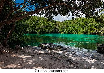 casa, cenote, 墨西哥, tulum, 里維埃拉, 瑪雅語, 加勒比海, 石灰石, sinkho
