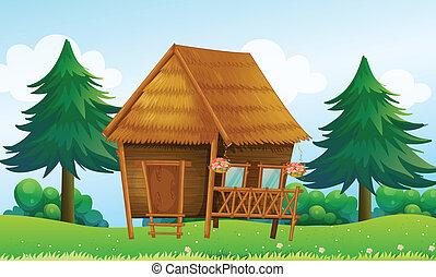 casa, colina, nativo