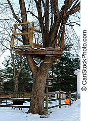 casa del árbol, en, invierno