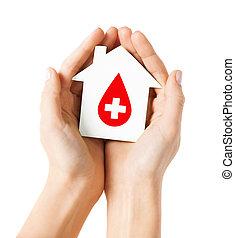 casa, donante, manos, tenencia, señal