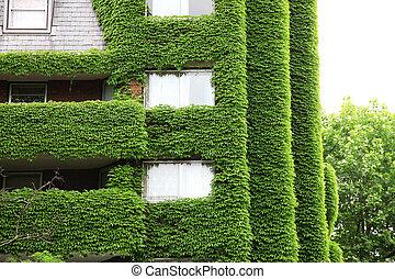 casa, ecología, verde, arquitectura, naturaleza