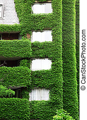casa, ecologia, verde, arquitetura, natureza