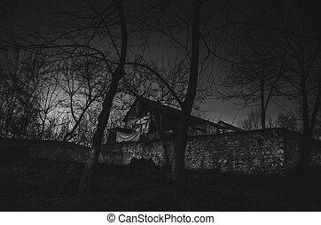 casa, en, niebla, por la noche, en el jardín, paisaje, de, fantasma, casa, en ayunas, forest.