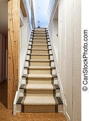 casa, escaleras, sótano