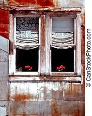 casa, estaño, ventana