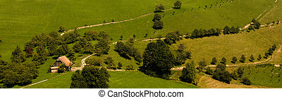 casa fazenda, antigas, verde