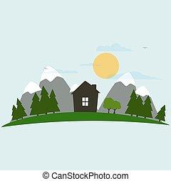 casa, floresta
